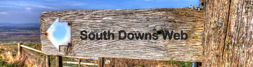 South Downs Web – Local SEO, Social Media Marketing